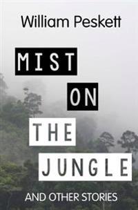 Mist on the Jungle