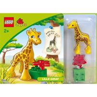Lille giraf