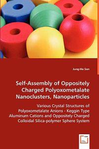 Self-assembly of Oppositely Charged Polyoxometalate Nanoclusters, Nanoparticles