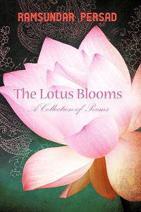 The Lotus Blooms