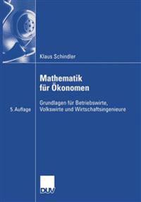 Mathematik Fur Ökonomen