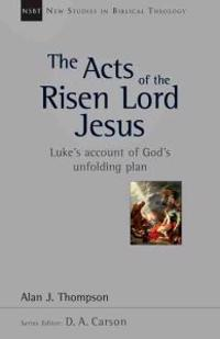 The Acts of the Risen Lord Jesus: A Biblical Theology of Incarnation