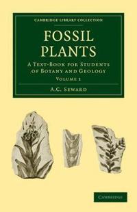 Fossil Plants 4 Volume Set Fossil Plants