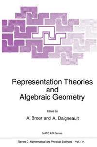 Representation Theories and Algebraic Geometry