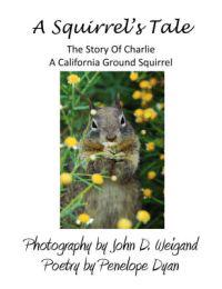 A Squirrel's Tale