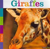 Seedlings: Giraffes