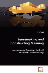 Sensemaking and Construction Meaning