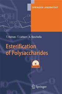 Esterification of Polysaccharides