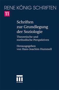 Schriften Zur Grundlegung Der Soziologie: Theoretische Und Methodische Perspektiven