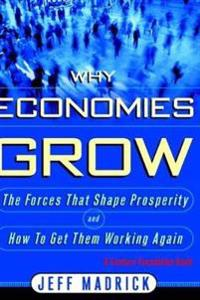 Why Economies Grow
