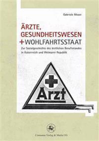 Ärzte, Gesundheitswesen Und Wohlfahrtsstaat: Zur Sozialgeschichte Des ärztlichen Berufsstandes in Kaiserreich Und Weimarer Republik