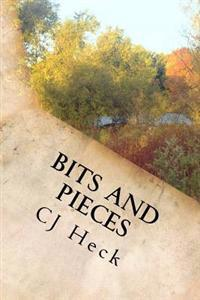 Bits and Pieces: Short Stories from a Writer's Soul
