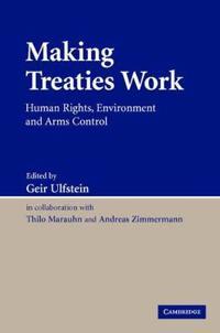 Making Treaties Work