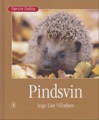 Pindsvin