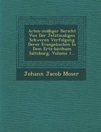 Acten-Massiger Bericht Von Der Jetztmaligen Schweren Verfolgung Derer Evangelischen in Dem Ertz-Bisthum Saltzburg, Volume 1...